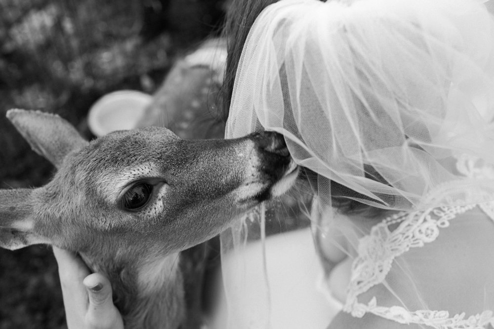 MN Rustic Barn Wedding by Marc Andreo Photography_6877.jpg