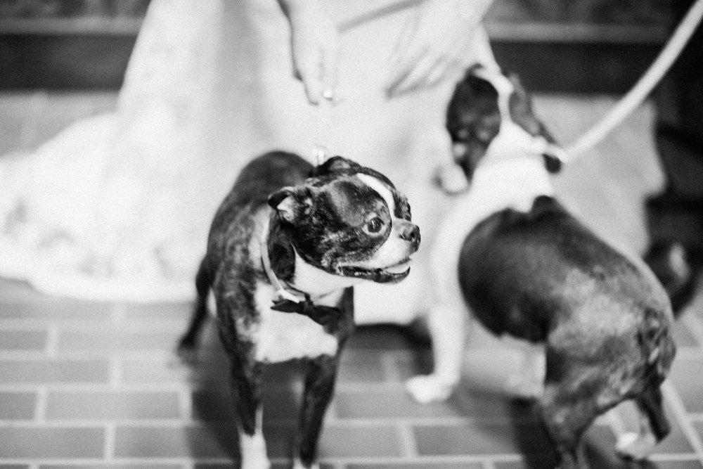 Lowertown Event Center Wedding_0055.jpg