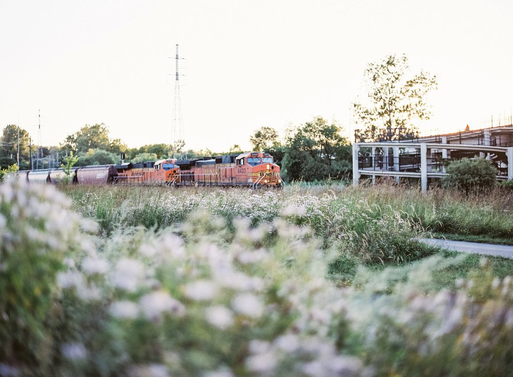 The train rushing by on the Kenilworth Trail.  Minneapolis, MN.