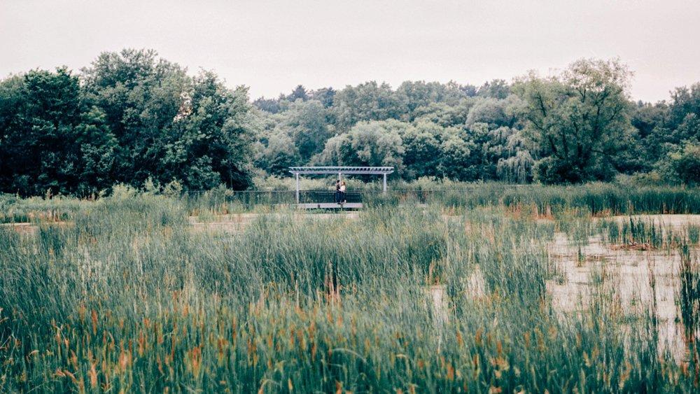 Theodore Wirth Park Engagement