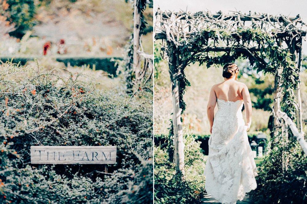Hidden Pond Resort Wedding_5482.jpg