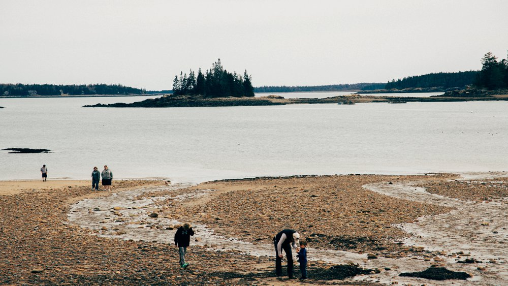 Families on the shore at Acadia National Park.