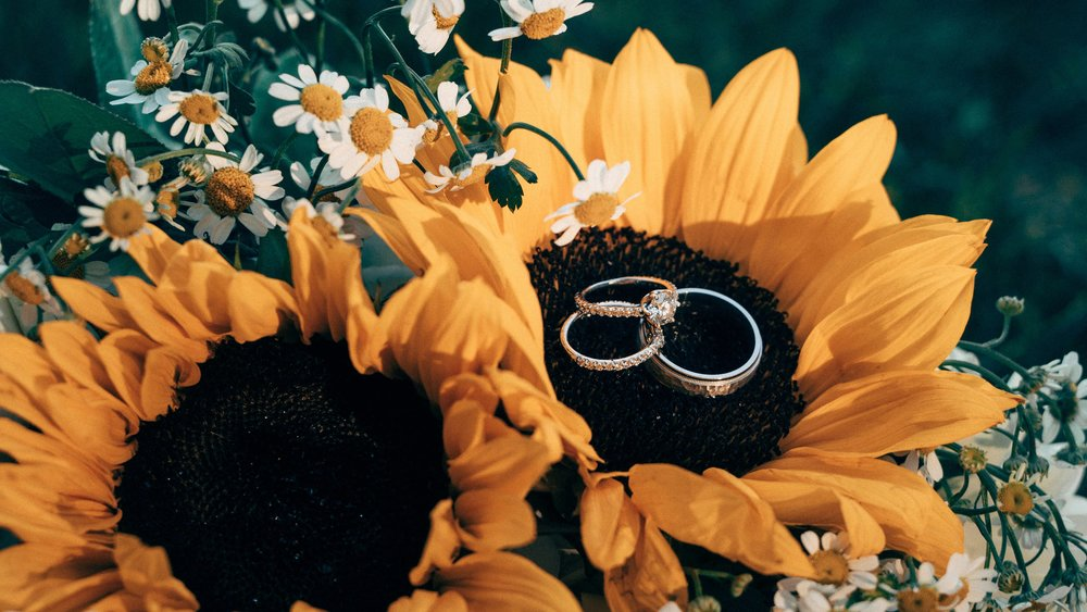 Minneapolis Wedding Photographers_9493.jpg
