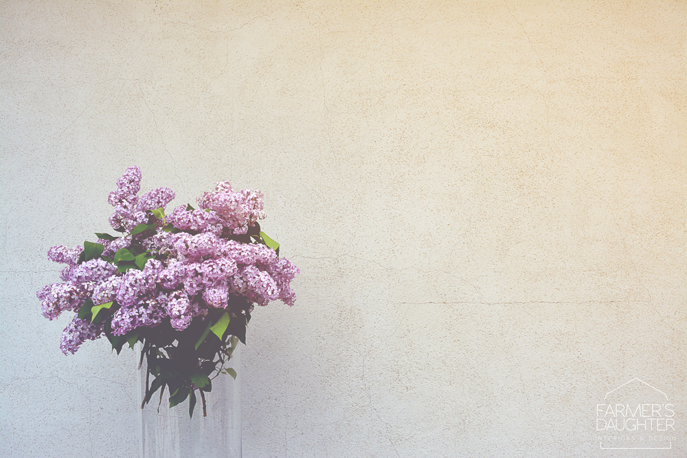 saskatchewan-lilacs-1.jpg