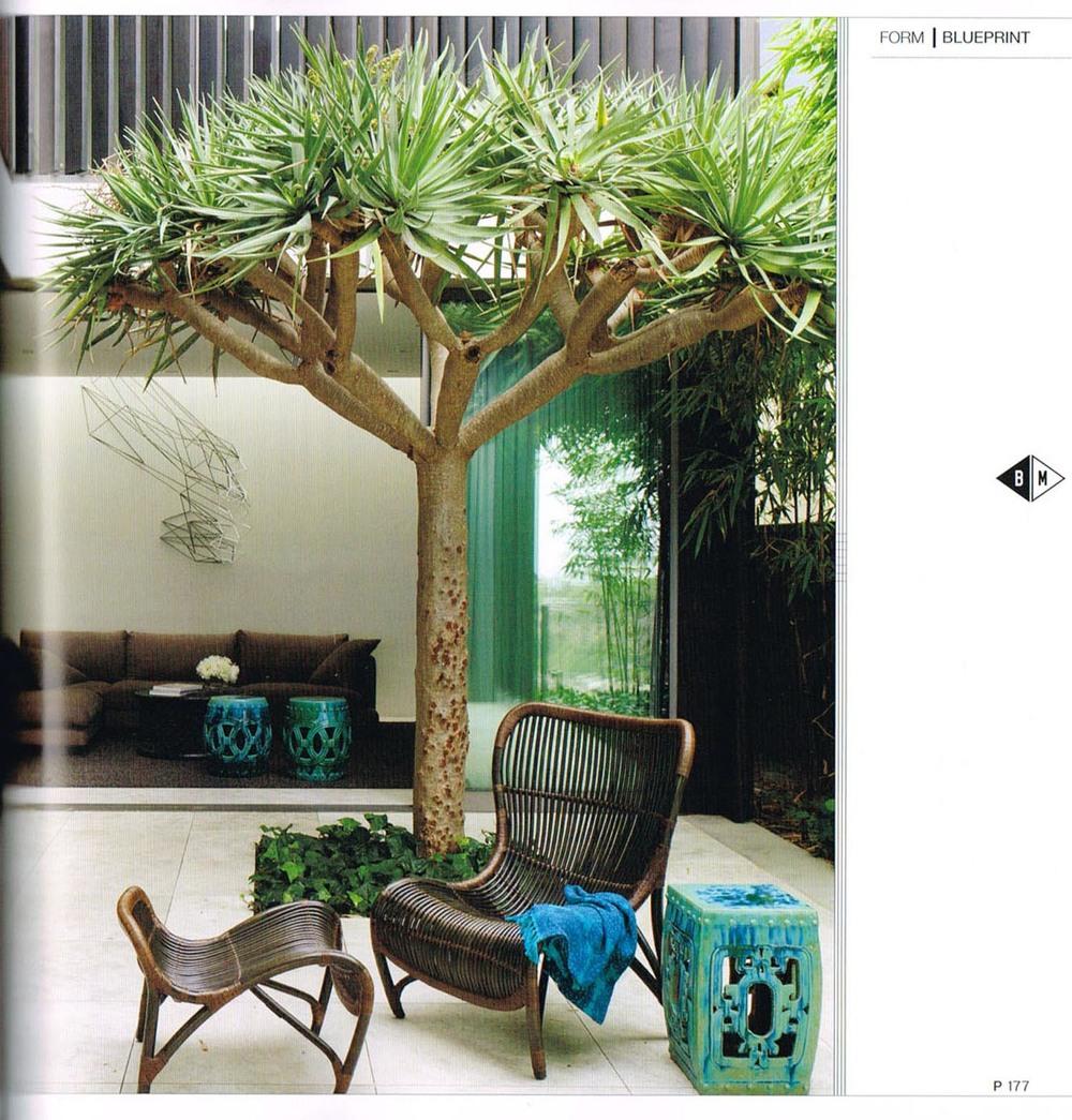 Madeleine-Blanchfield-Architects-page 2 box magazine.jpg