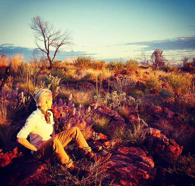 Desert pallet. 🔥🌵