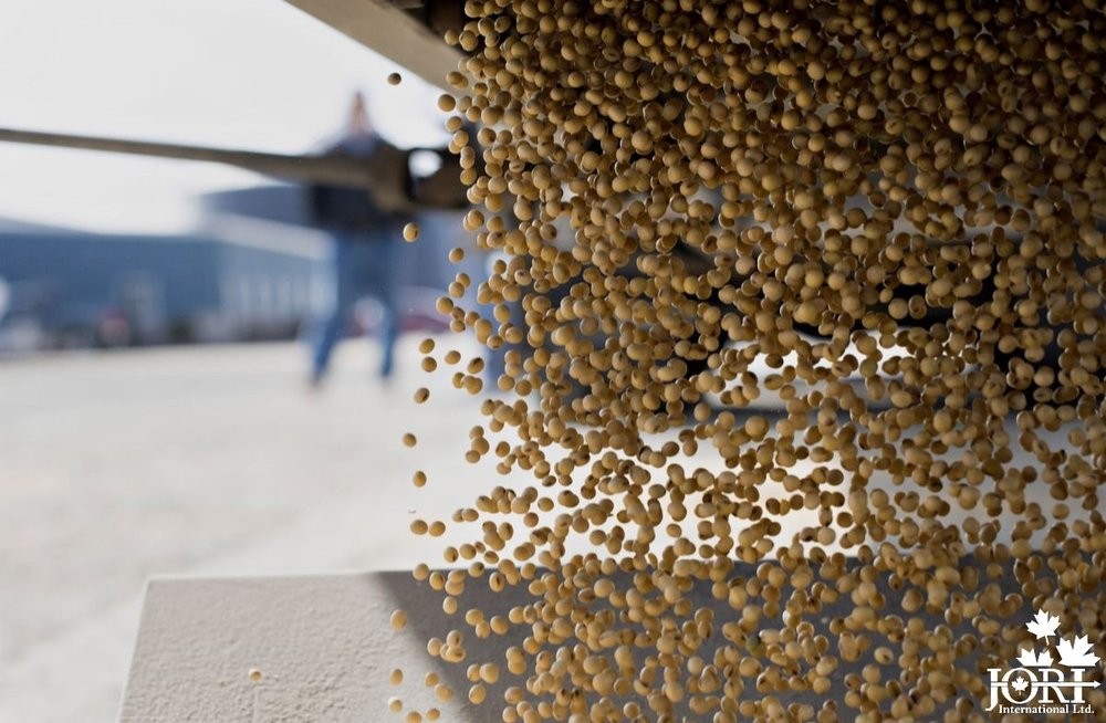 soybean-image-sourced-by-bloomberg.jpg