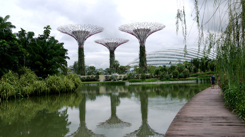 Photo Credits:  Gardens by the Bay