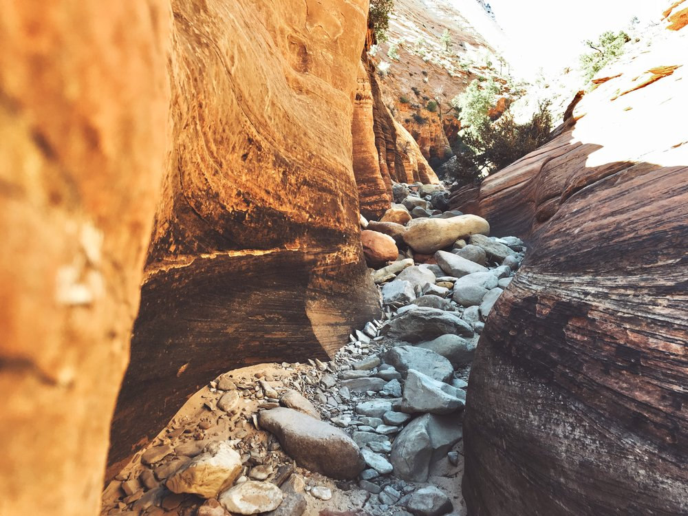 [Image of a winding ravine between two large rocks, stretching back beyond the photo's view, with sand and many smaller rocks along the way. Photo by Mia Mingus.]