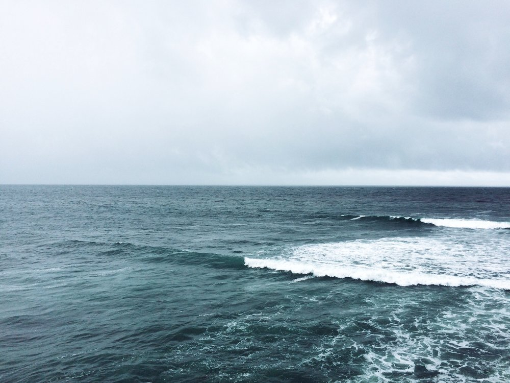 [Image of gentle ocean waves and the horizon on a cloudy day. Photo by Mia Mingus]