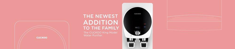 King Model Ad banner.jpg