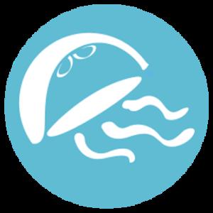 JellyfishDirectCom-Logo-333x333-300x300.png