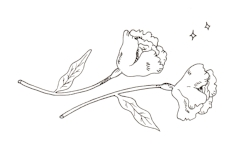 Small flowers process.jpg
