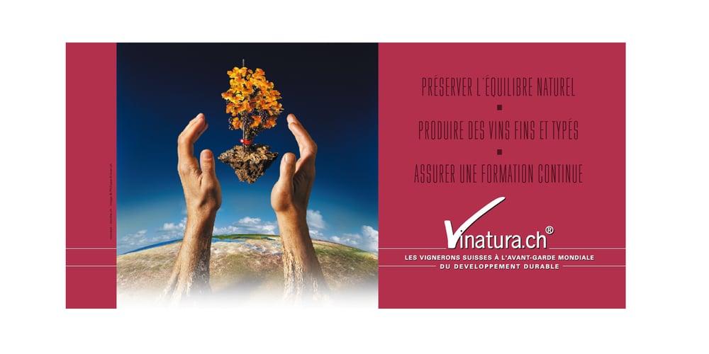 Generer_Vinatura.jpg