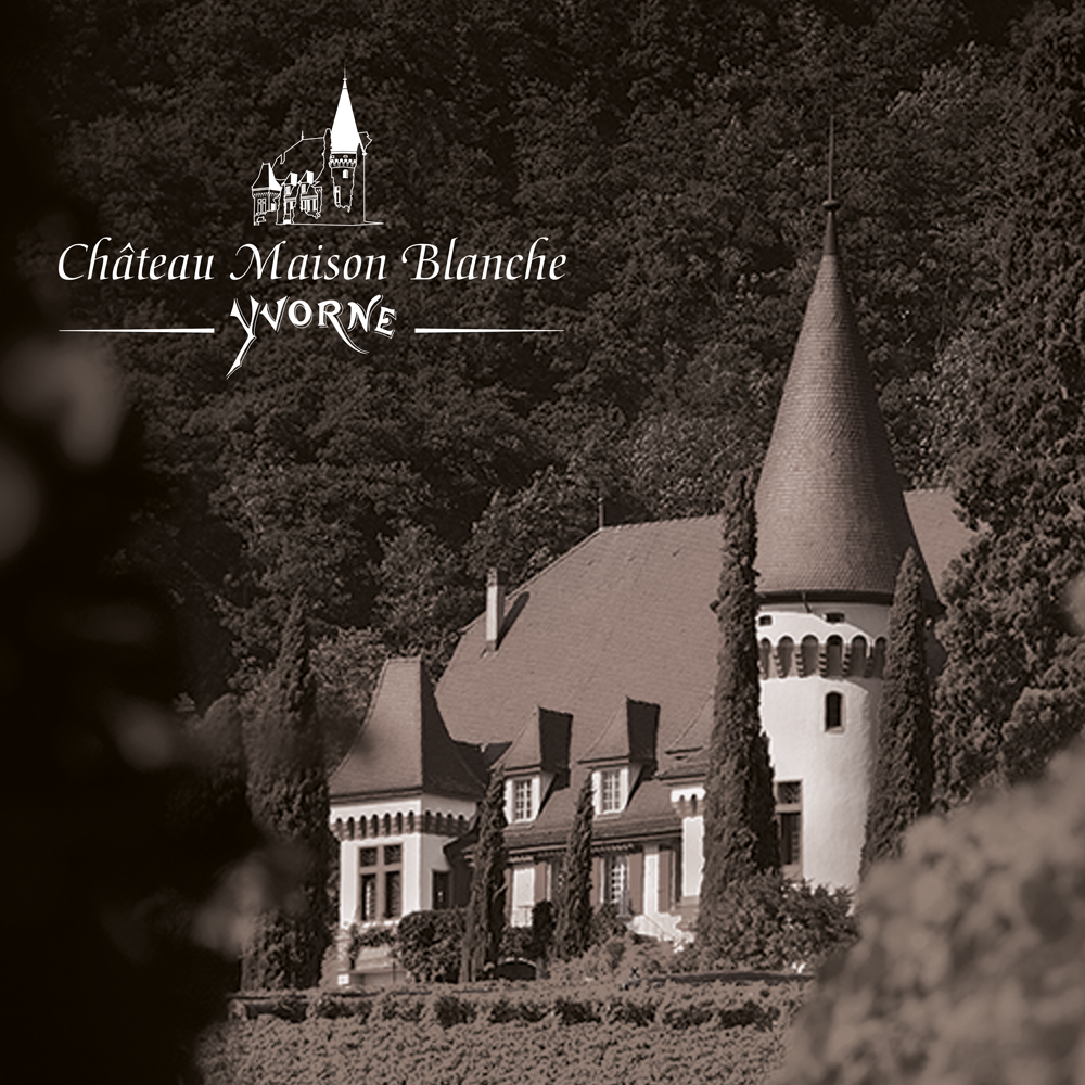 Le mythique Château Maison Blanche à Yvorne nous a fait confiance pour développer ses nouvelles activités et mettre en avant la complémentarité du vin et de la gastronomie.