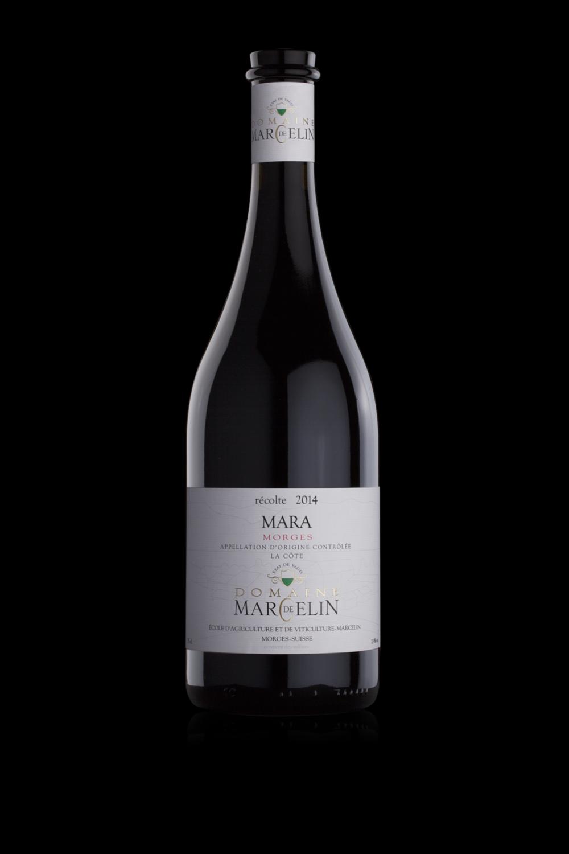 MARCELIN-Bouteille-Mara-creation-danthe.png