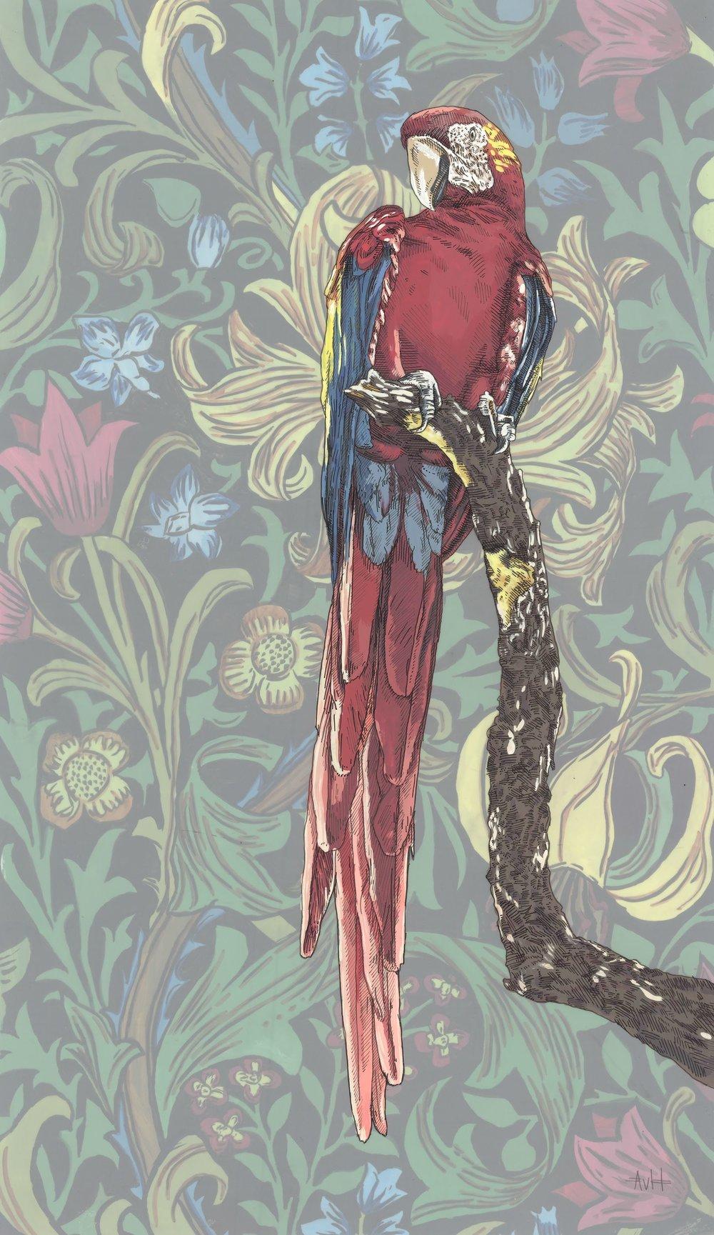 Botanical Parrot II