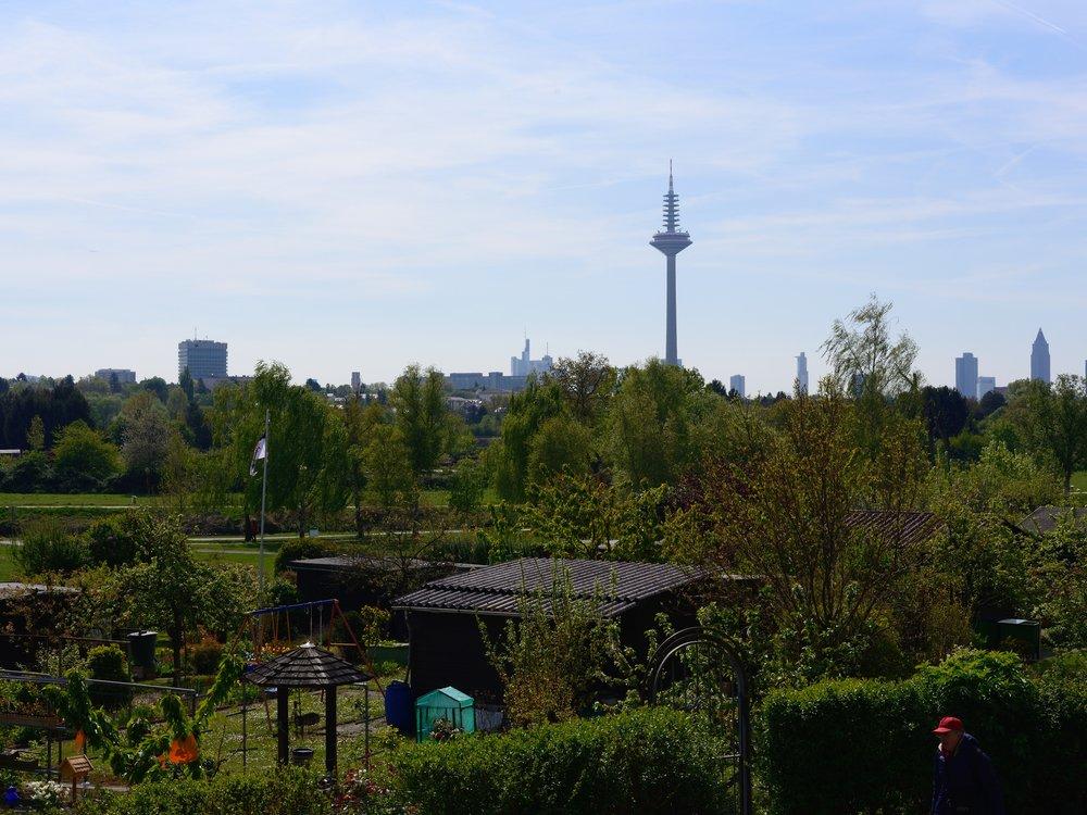 Skyline view of Frankfurt from the Römerstadt walls