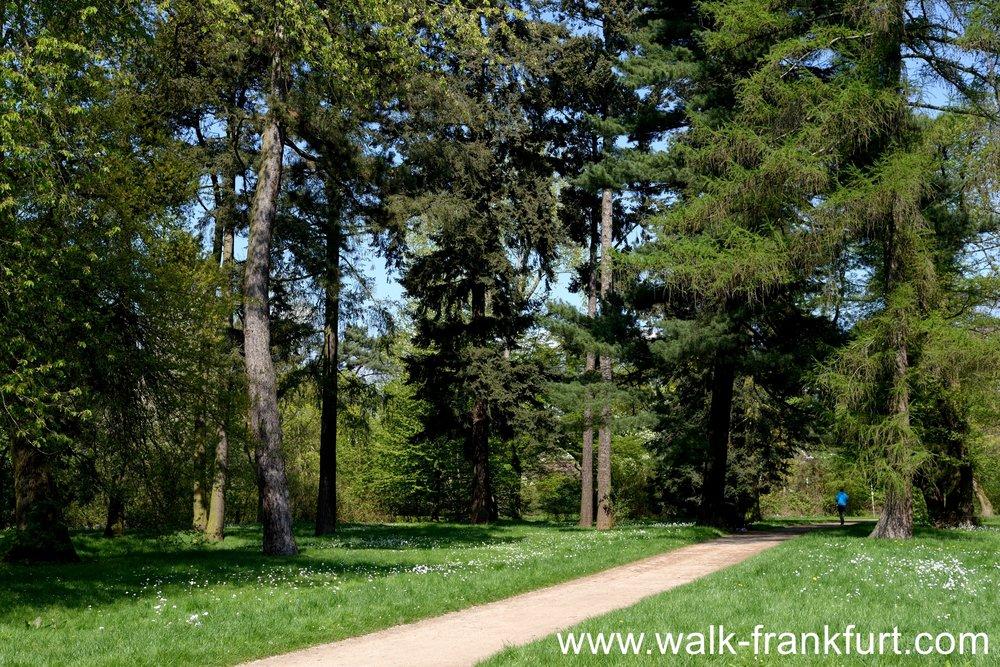 Solmspark near Rödelheim