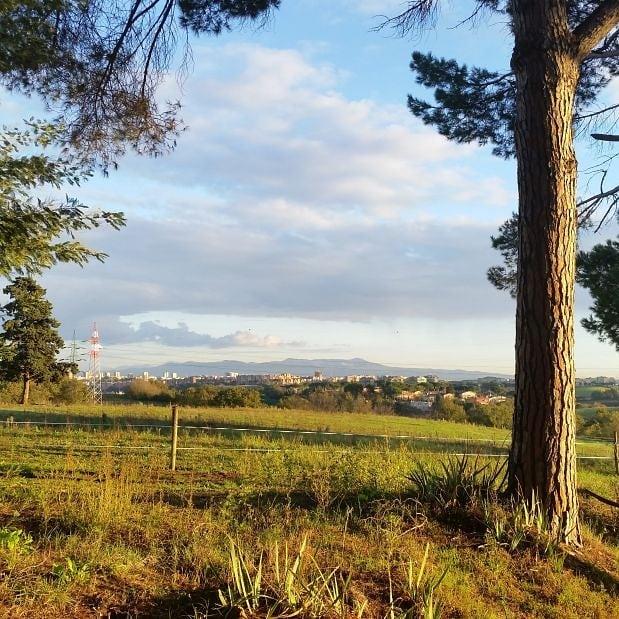 #countryside #Vejopark #Villasilj