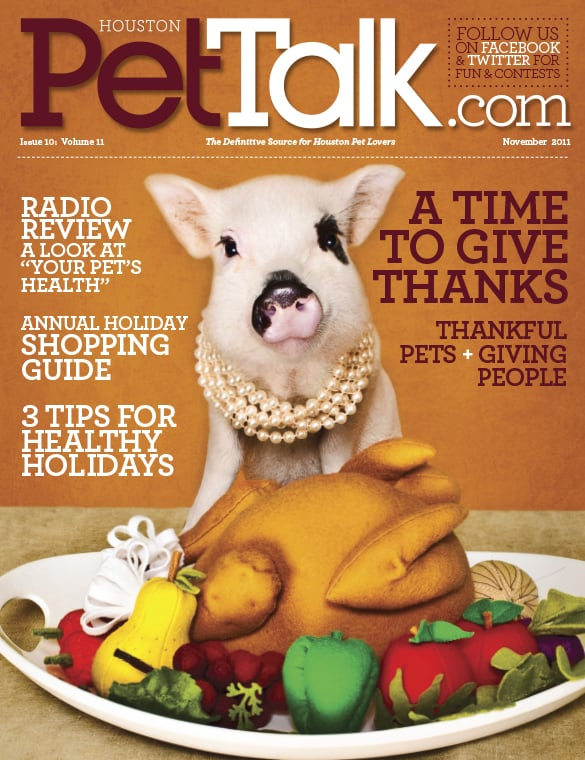 22-PetTalk-November-2011_cover.jpg