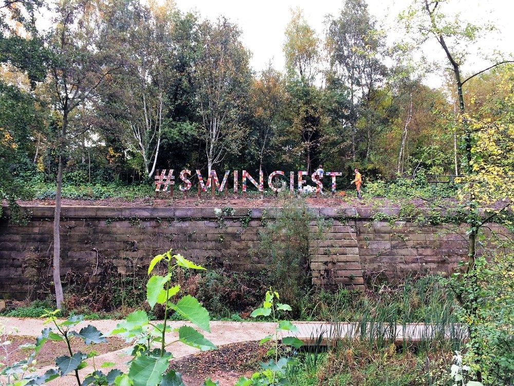 swingiest.JPG