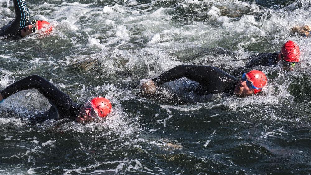 Open water svømning - 400, 1.600 og 3.200 meter