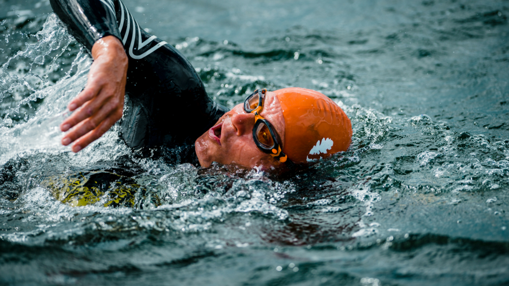 Open water svømning - voksne -