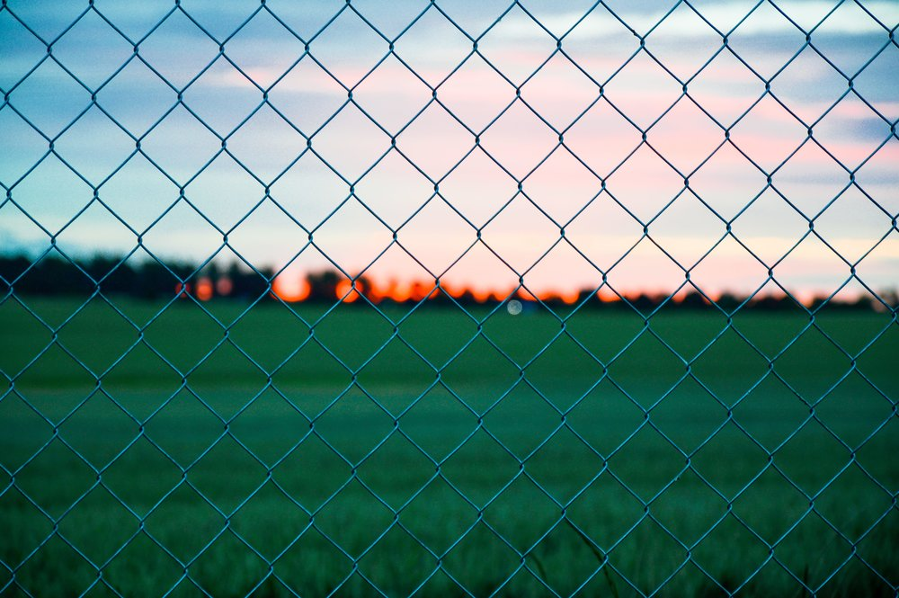 wire fence view