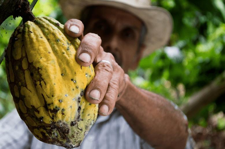 Inclusive Business Smallholder Farmers