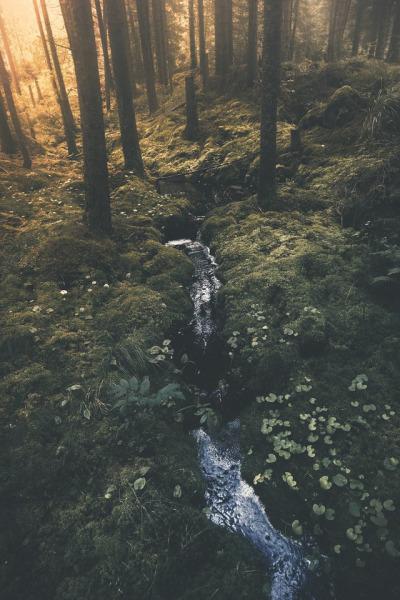 Featured photo: Värmland | jabe147