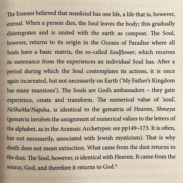 The Law of Light ~ Lars Muhl 💛✨#languageoflight #yoga #union #love #heroinesjorney #larsmuhl #one #soulflower