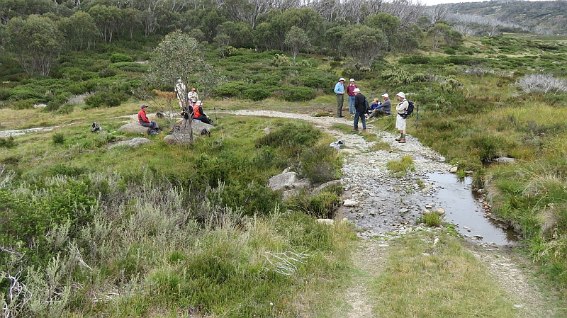 Walking the Wragges Creek Track