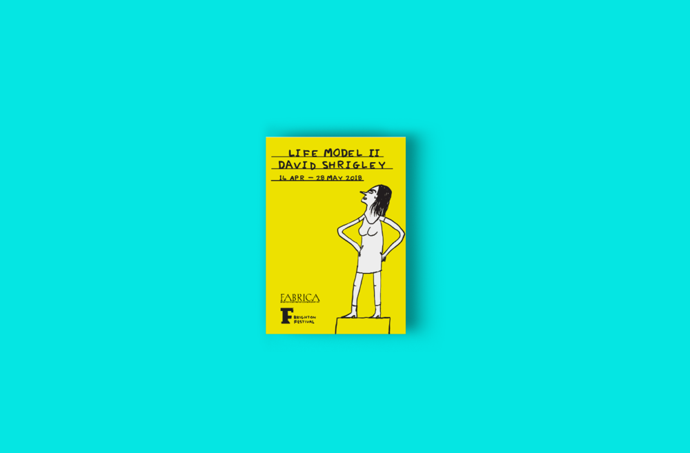 Shrigley_design_.promo_guide_cover.png