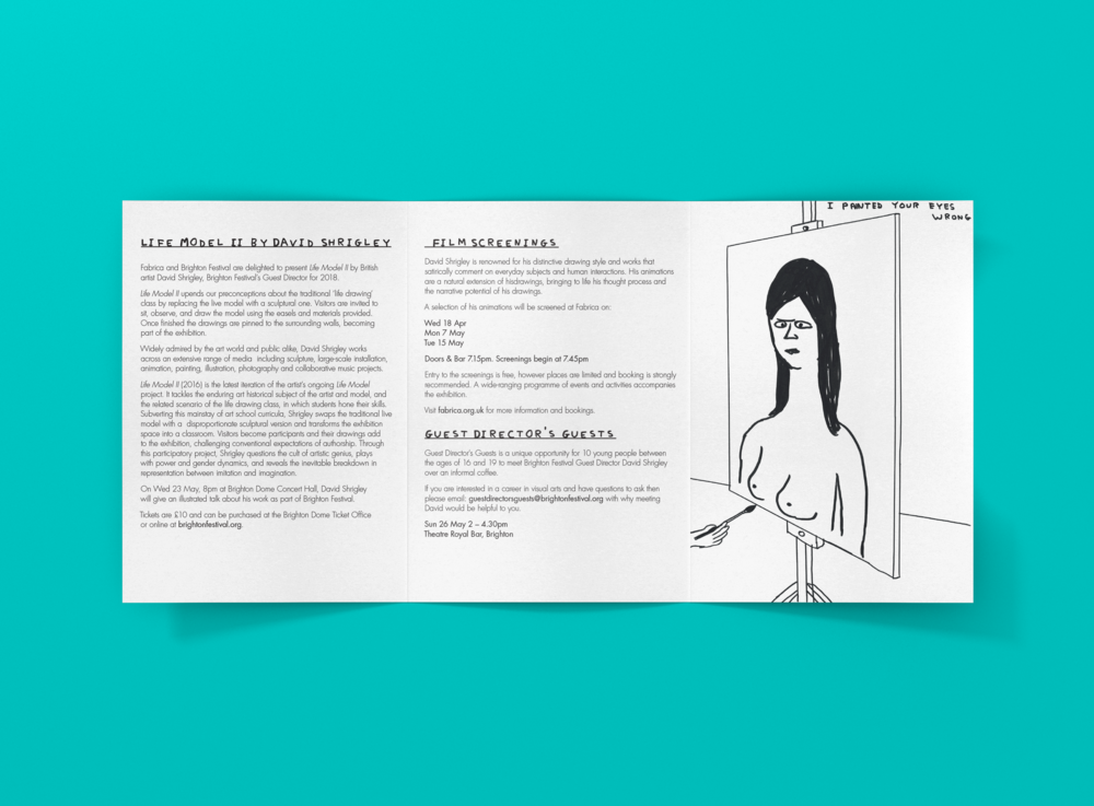 Shrigley_design_.promo_guide_back.png