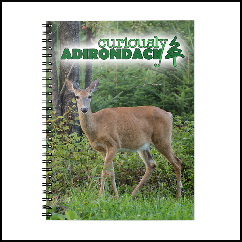 ca-deer-notebook-1.png