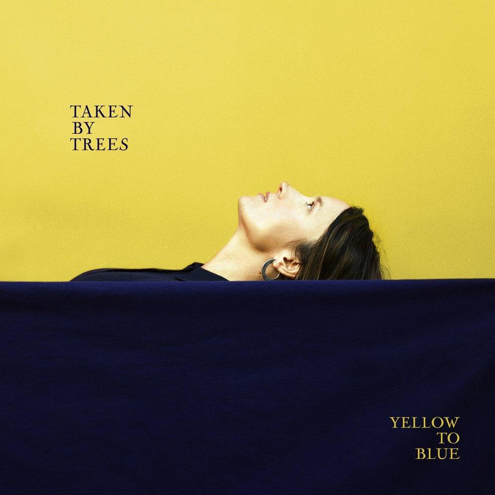 tbt_yellow_blue.jpg