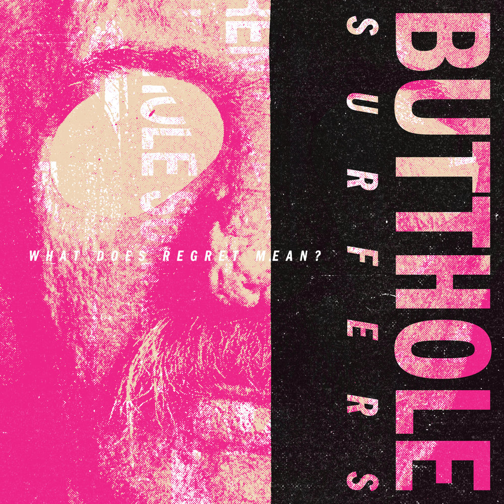 Melodic Virtue - Butthole Surfers Book Cover.jpg