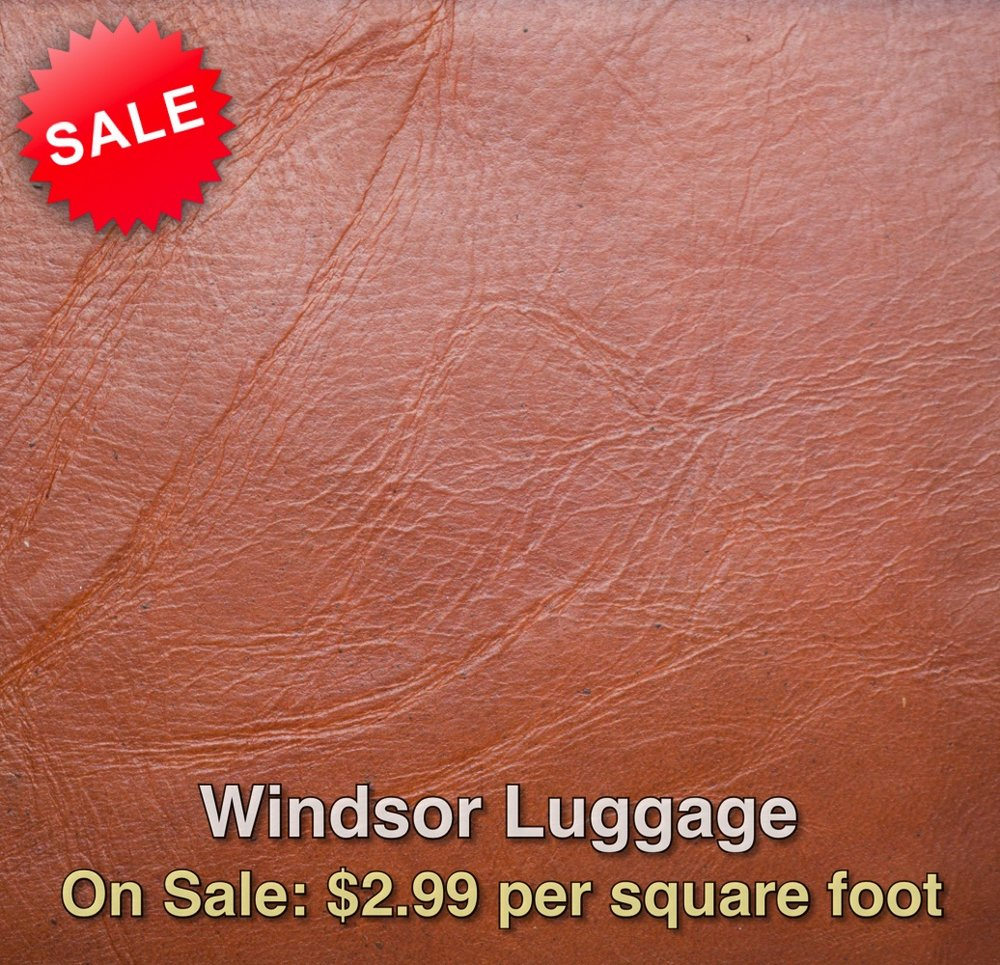Windsor Luggage_web.jpg