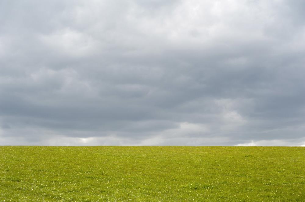 empty_field.jpg