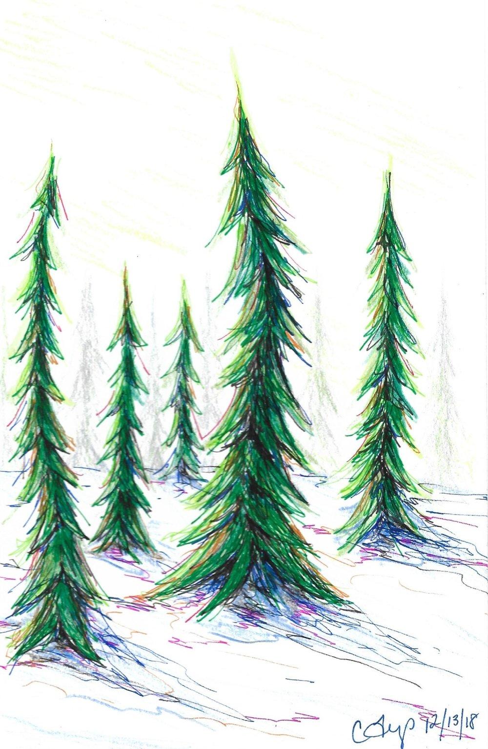 crooked trees-2018.jpg