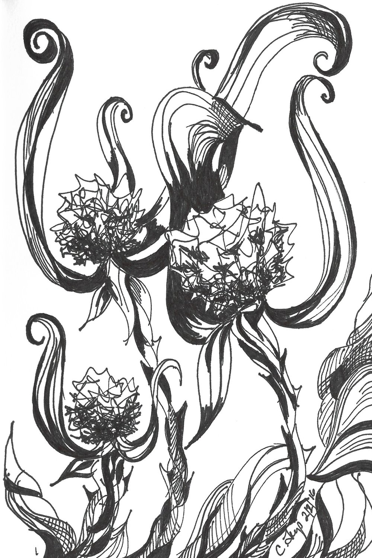 flower-illustration-scan.jpg