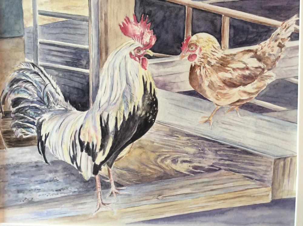 Chickens    $350.