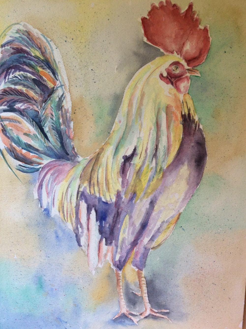 Rooster       $200.