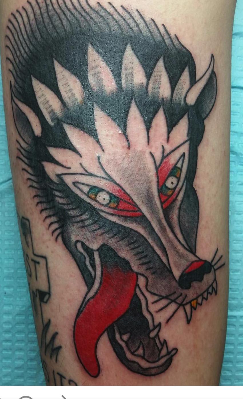 wolfharry.jpg