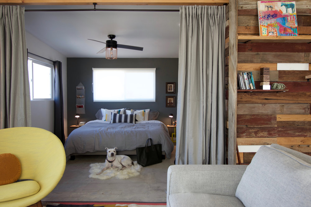 PMC-living-bedroom-dog.jpg
