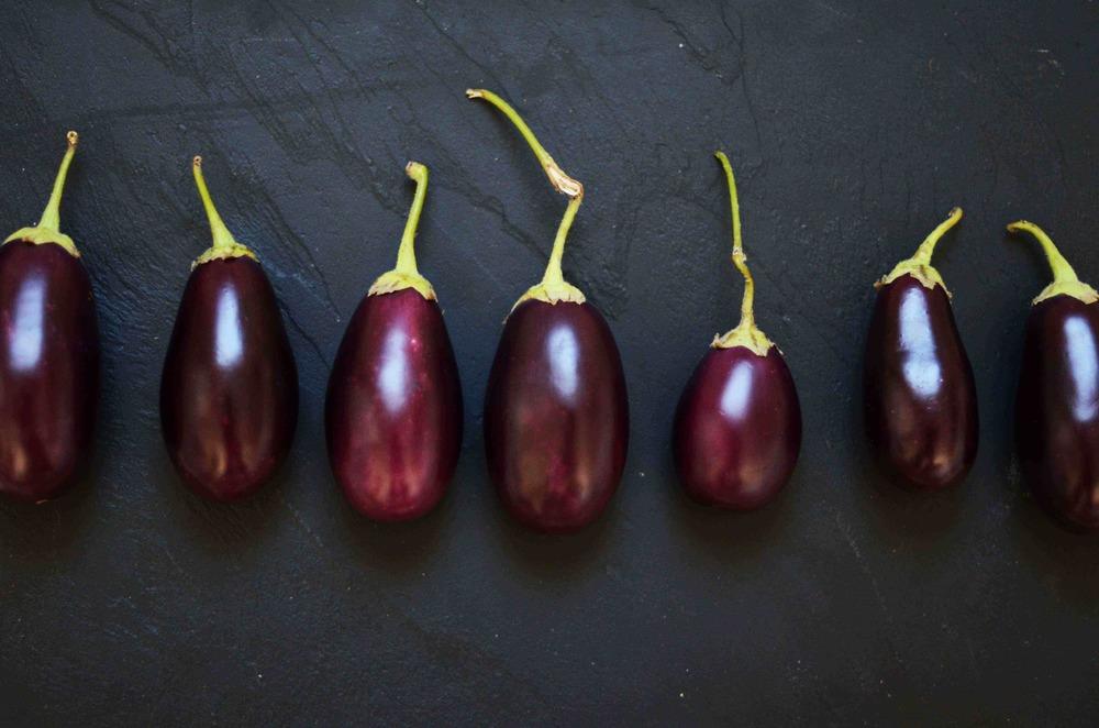 eggplant-8-LQ.jpg