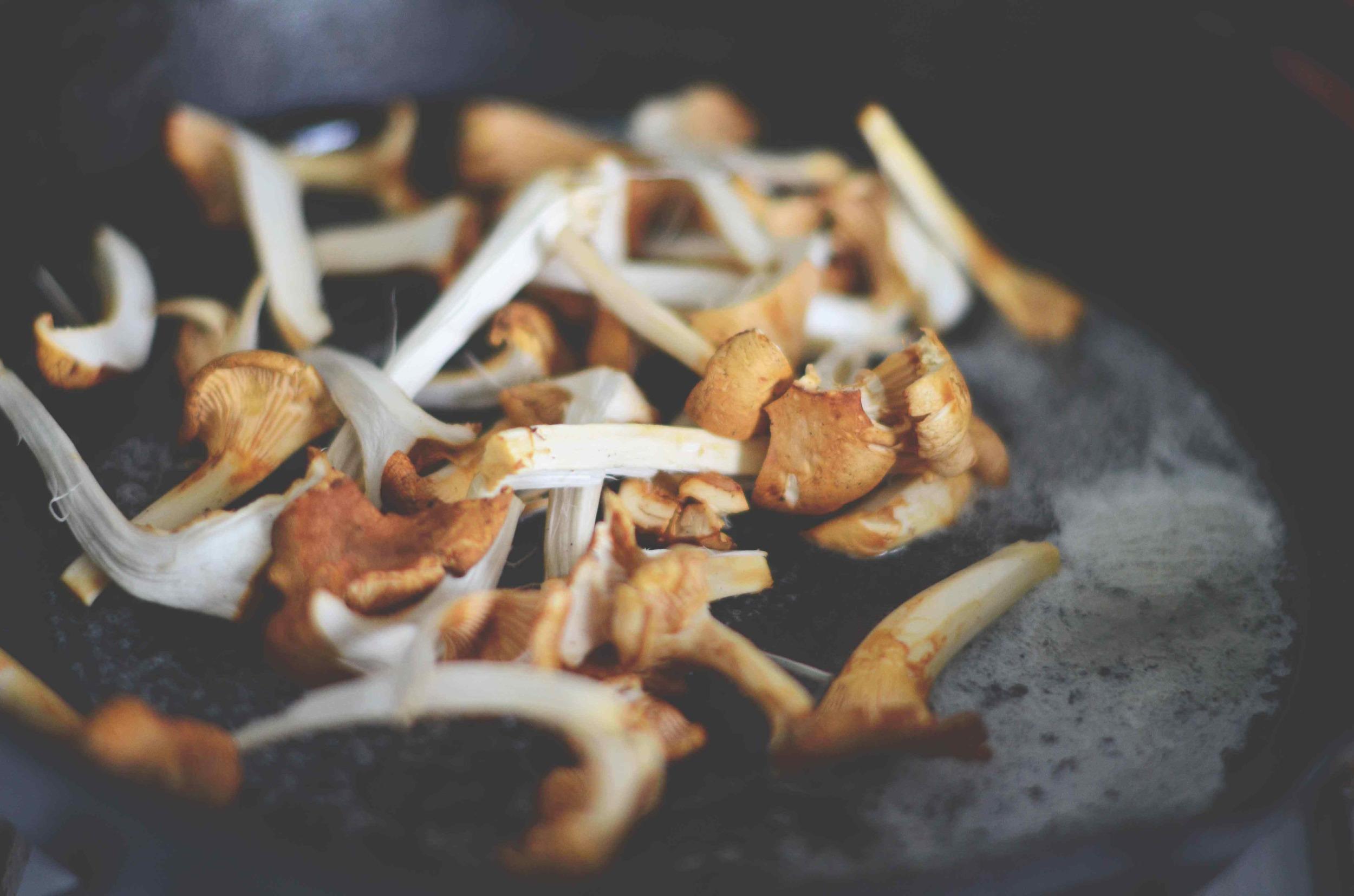 mushroom-toast-8 LQ