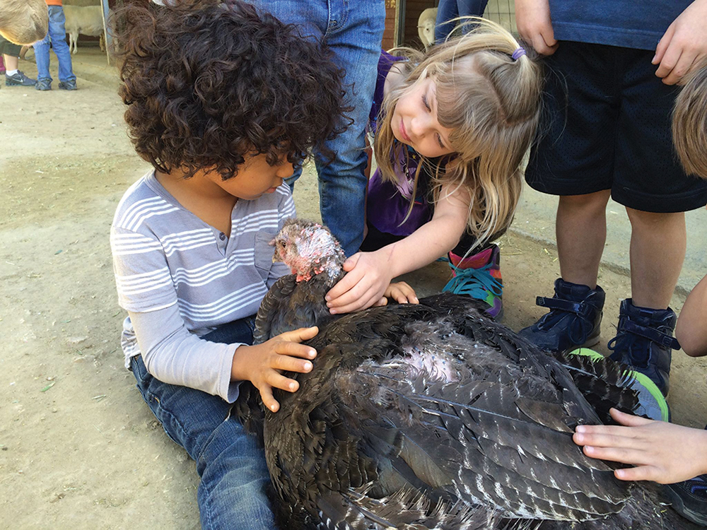 Young visitors with a friendly turkey.