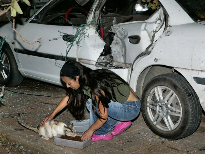 A Hakol Chai volunteer feeding cats next to a bombed car.